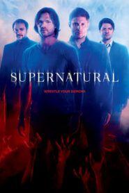 Lovci duchů / Supernatural