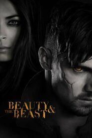 Kráska a zvíře / Beauty and the Beast