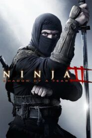 Ninja 2: Pomsta