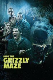 Grizzly zabiják