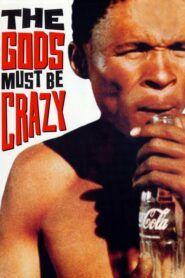 Bohové musejí být šílení