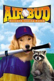 Buddy – Hvězda baseballu