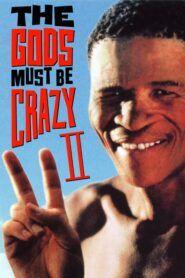 Bohové musejí být šílení 2