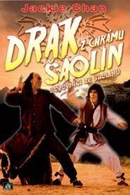 Bojovníci ze Šaolinu