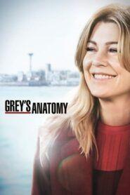 Chirurgové / Grey's Anatomy