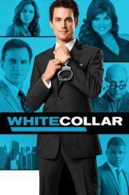 Ve službách FBI / White Collar
