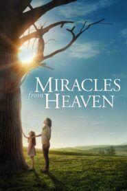 Zázraky z nebe