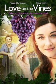 Láska na Víně