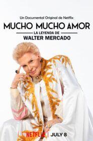Mucho Mucho Amor: Legendární Walter Mercado