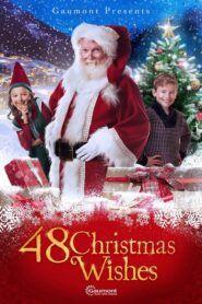 Ztracená vánoční přání