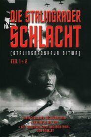Stalingradská bitva II