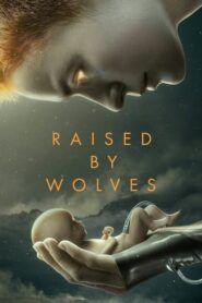 Vychováni vlky