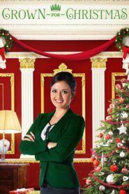 Koruna k Vánocům