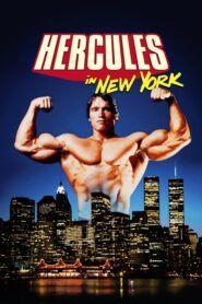Herkules v New Yorku
