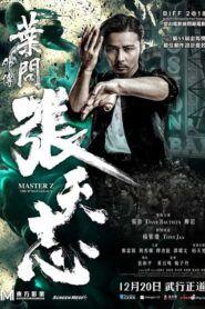 Ip Man: Cheung Tin Chi