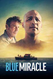 Modrý zázrak